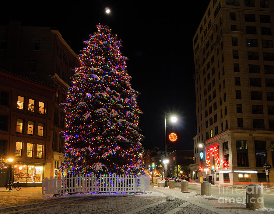 Portland Maine Christmas.Holiday Tree In Monument Square Portland Maine 94562
