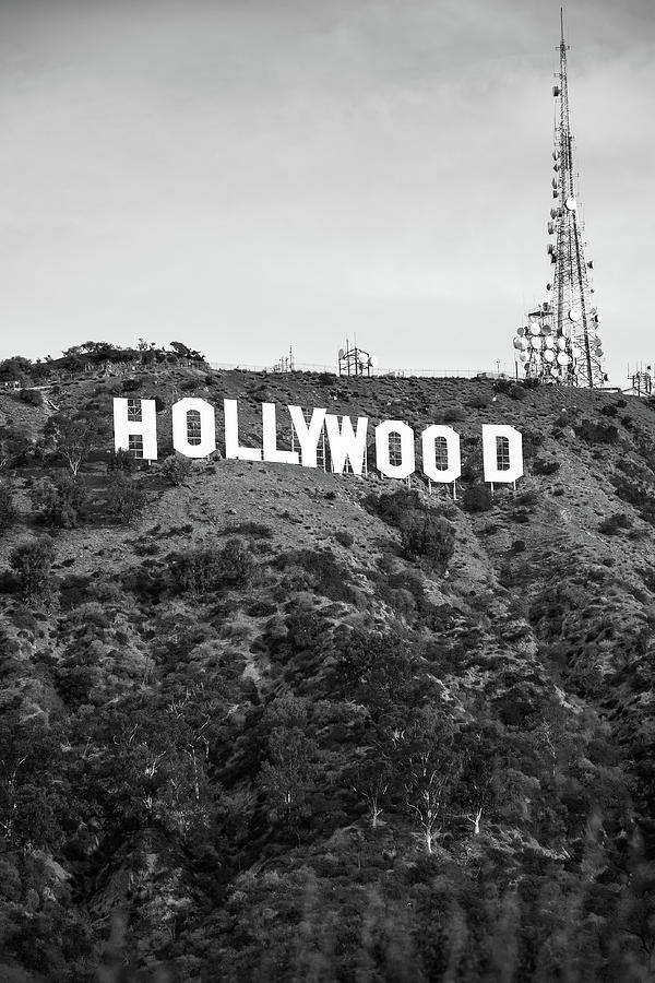 Hollywood Hills Sign Vertical Color