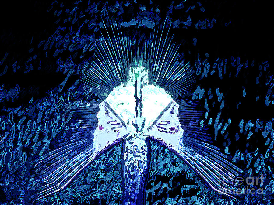 Spirit Digital Art - Holy Spirit by Patrick Guidato