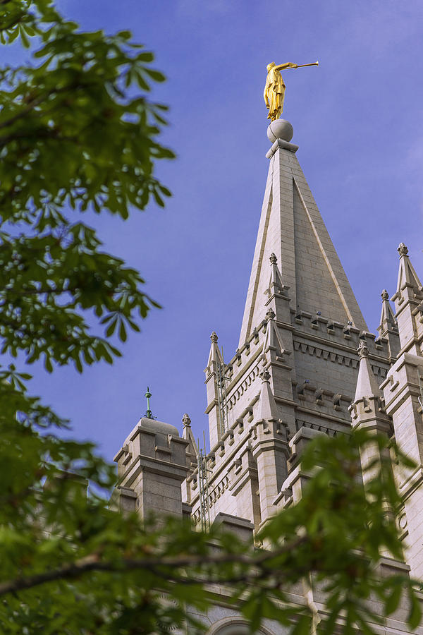 Mormon Photograph - Holy Temple by Chad Dutson