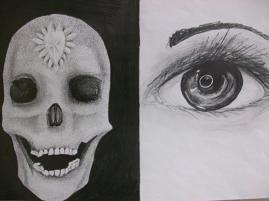 Drawing Drawing - Homage To Hirst by Kate Padberg