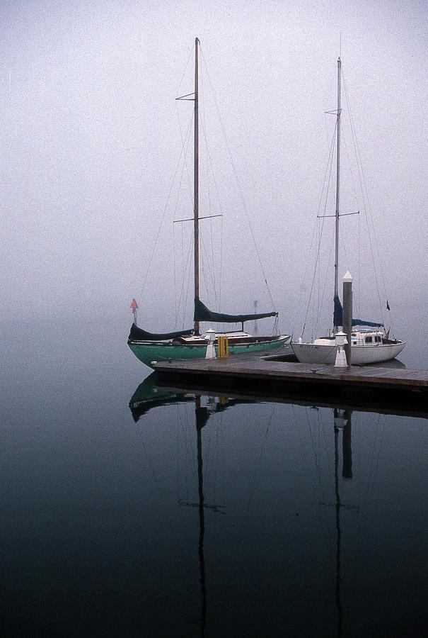 Marine Photograph - Home Again by Skip Willits