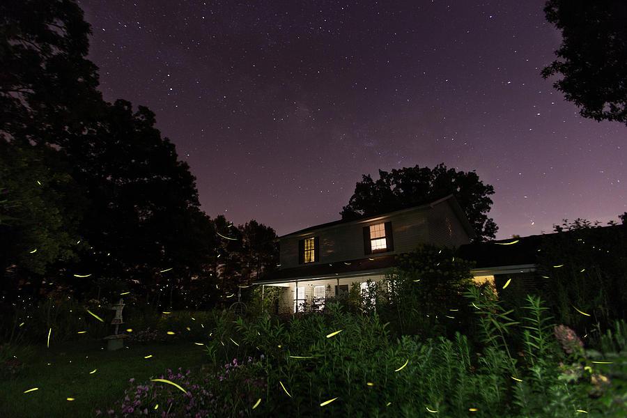 Home by Eilish Palmer