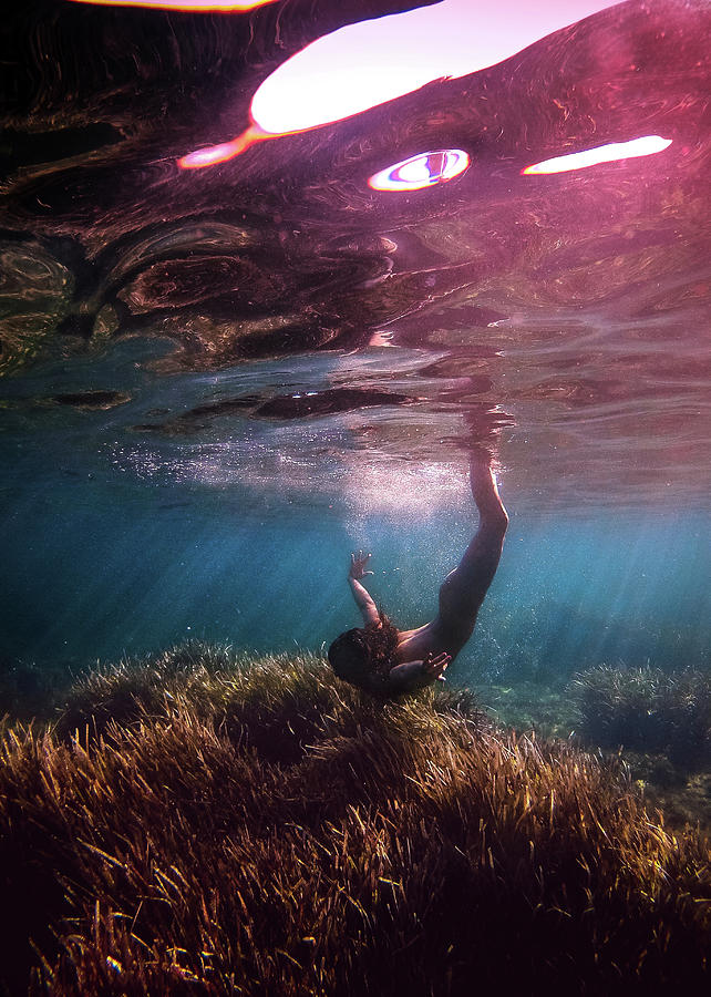 Swim Photograph - Home by Gemma Silvestre