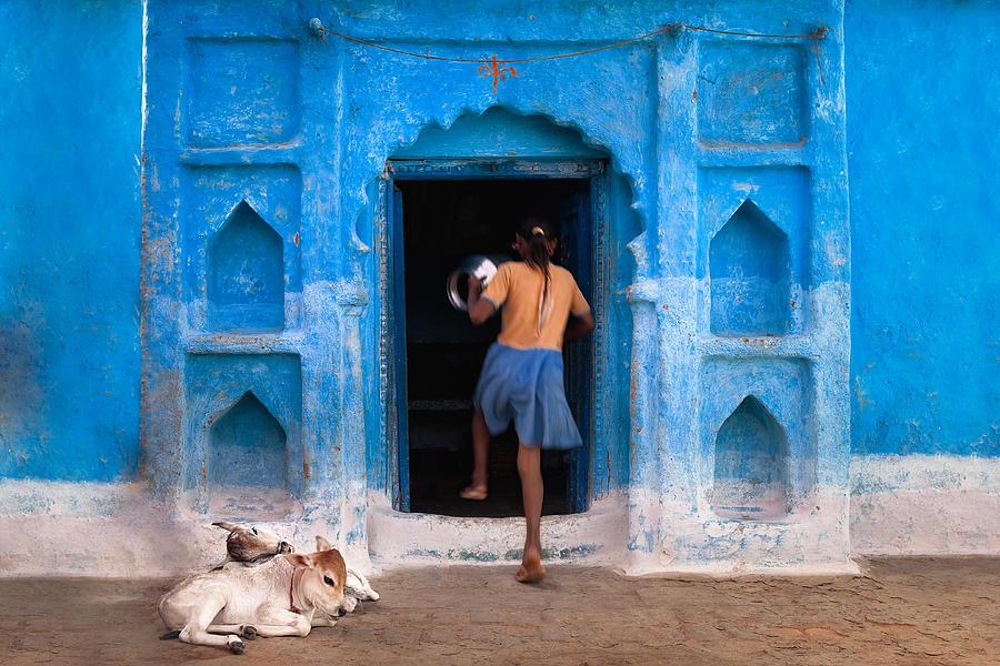 India Photograph - Home by Marji Lang