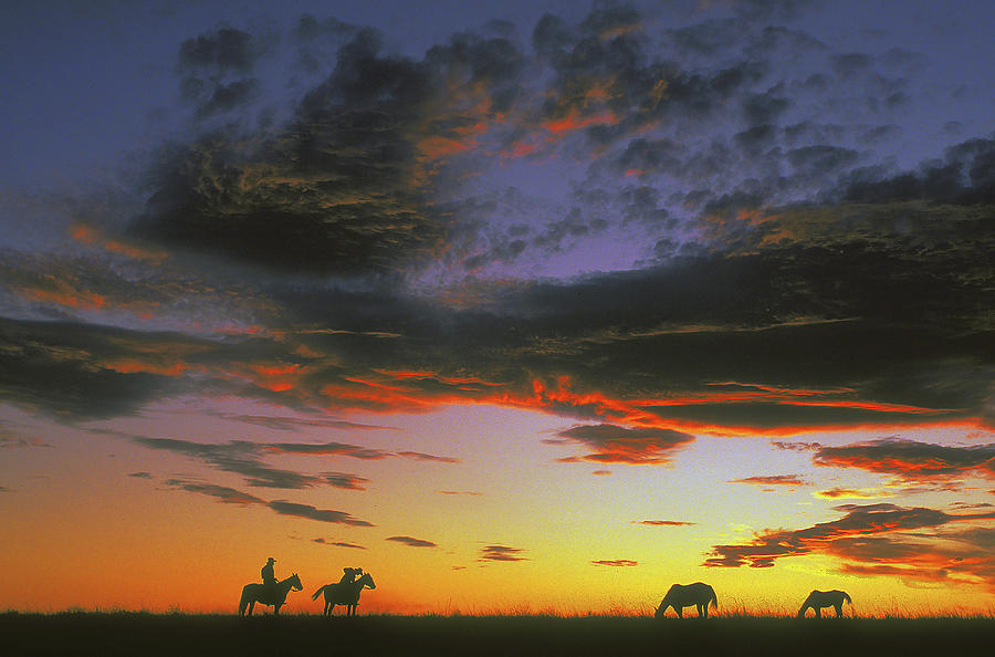 Cowboys Photograph - Home On The Range by Carl Purcell