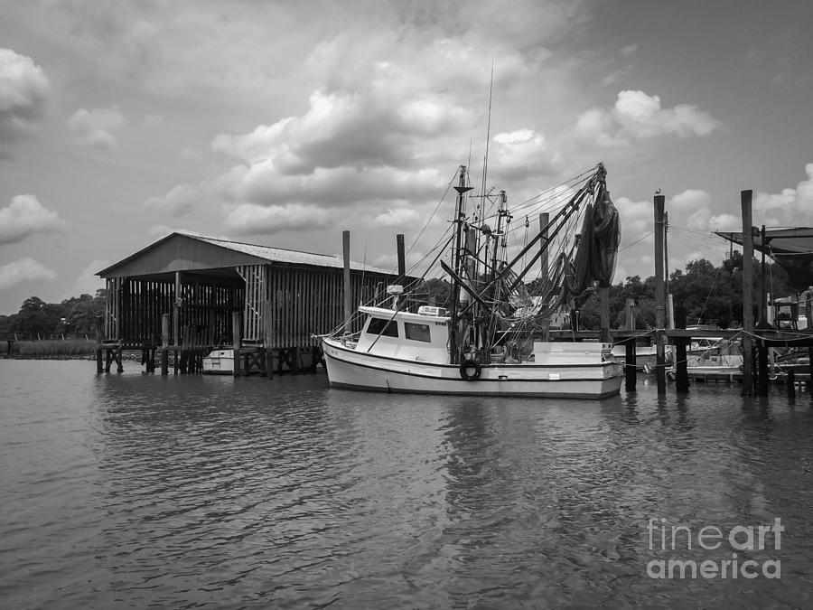 Sc Photograph - Home Port by Dale Powell