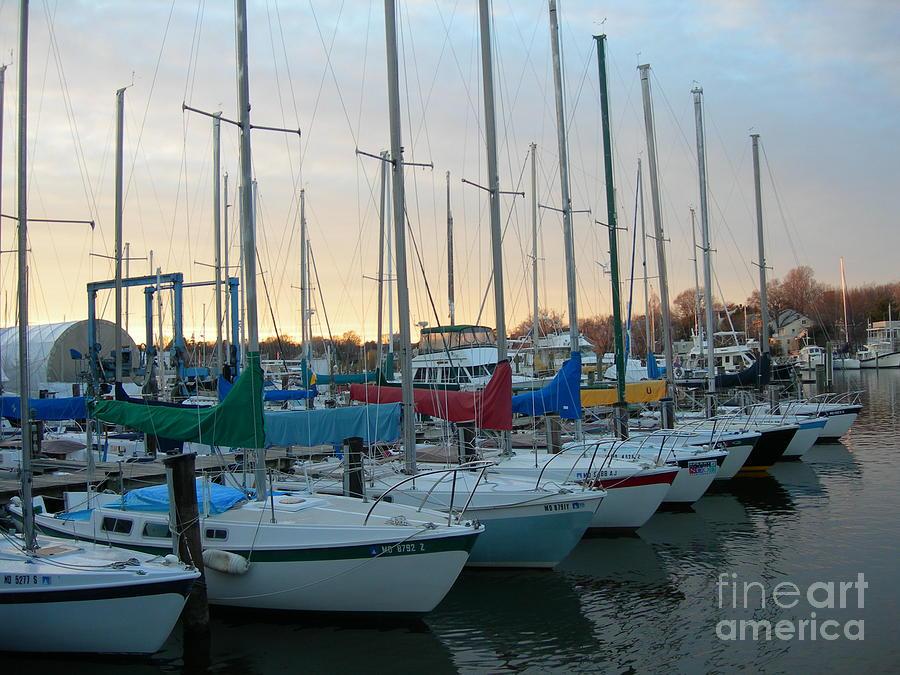 Sailboat Photograph - Home Port by Sherri Bramlett