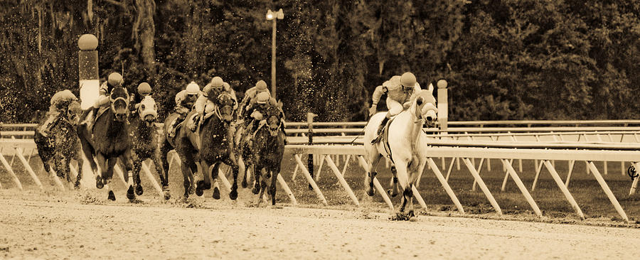 Race Horse Photograph - Home Stretch by Patrick  Flynn
