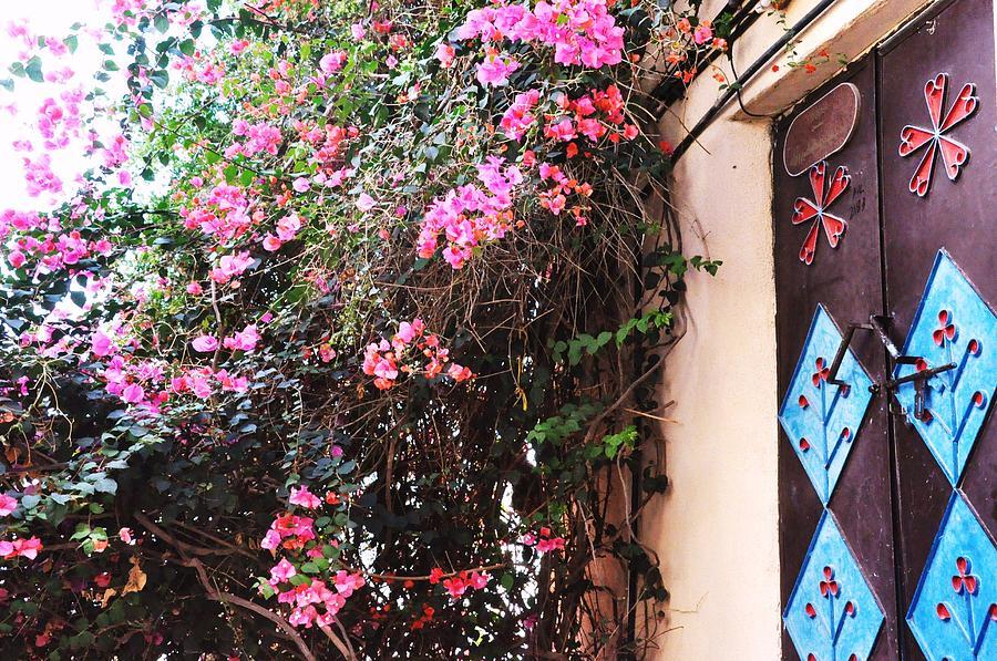 Home Photograph - Home by Sunaina Serna Ahluwalia