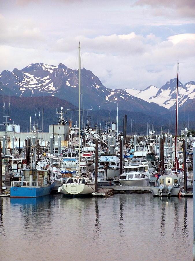 Homer Alaska Photograph - Homer Harbor by Marty Koch