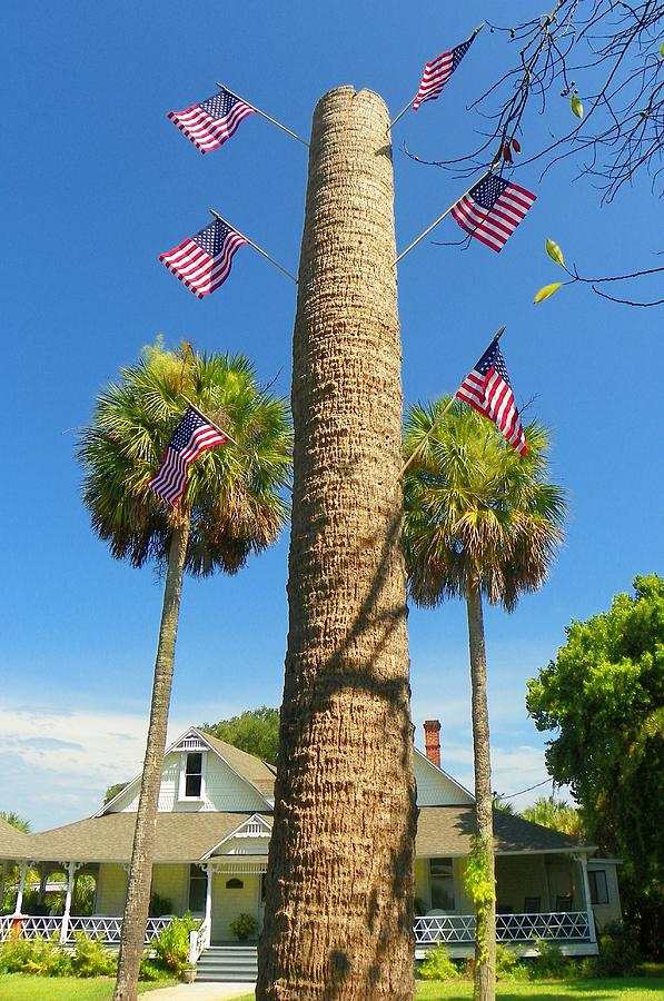 Fourth Photograph - Hometown Fourth by Sheri McLeroy