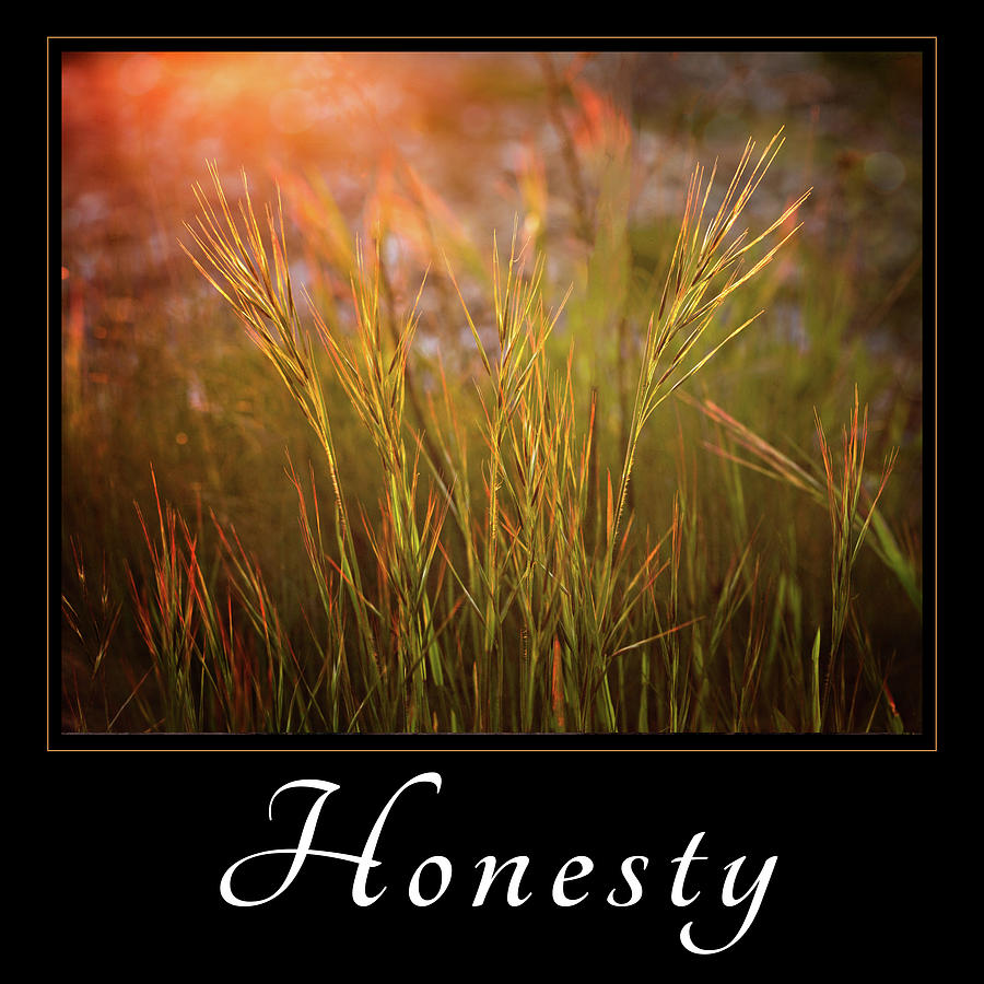 Gresham Photograph - Honesty by Mary Jo Allen