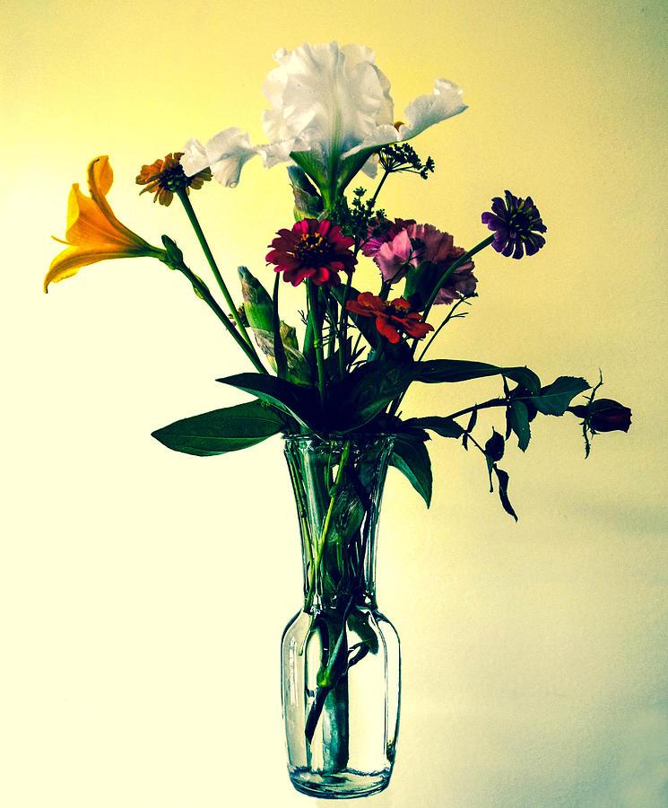 Flowers Photograph - Honey Creek Flowers by Tom Zukauskas