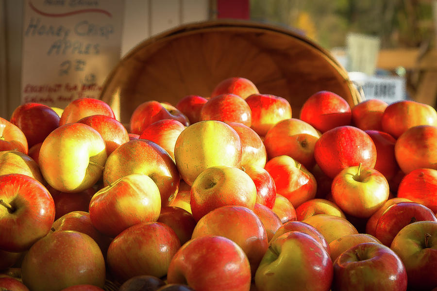 Juicy Photograph - Honey Crisp #205 by Running Man with the Camera