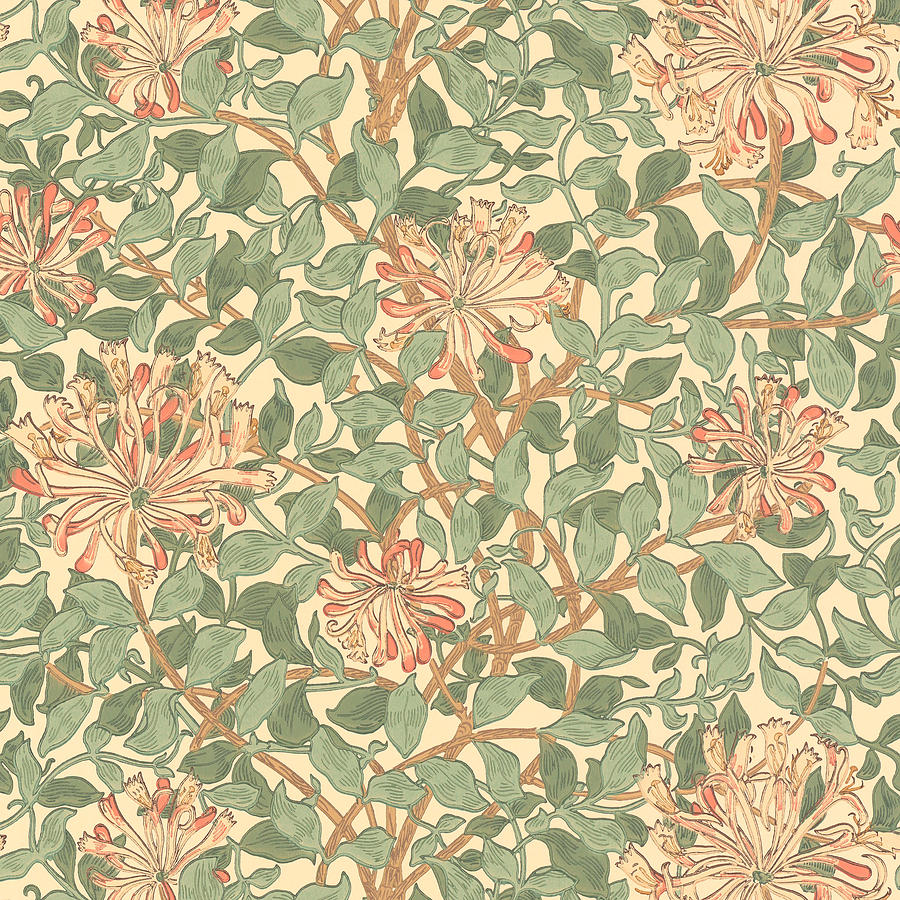 Honeysuckle Pattern Mixed Media by William Morris