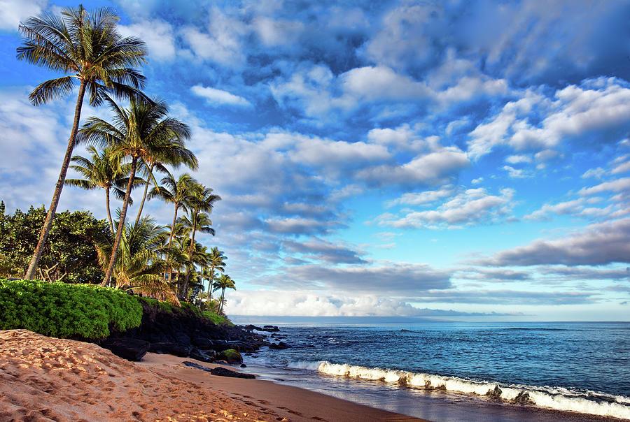 Landscape Photograph - Honokowai Palms by Marcia Colelli