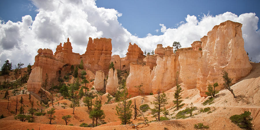 Bryce Hoodos And Spires Photograph by Amelia Durham