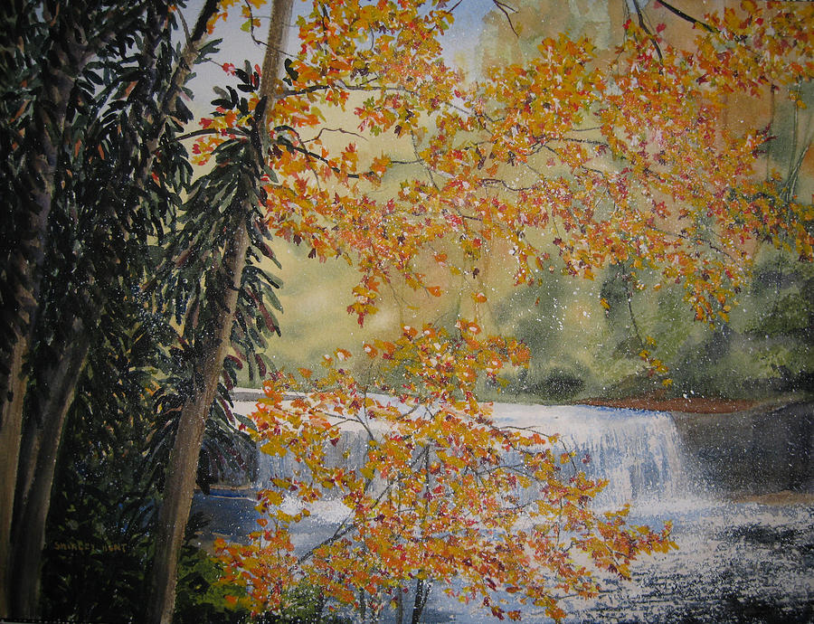 Landscape Painting - Hooker Falls by Shirley Braithwaite Hunt