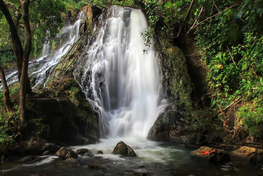 Kauai Photograph - Hoopii Falls by Ryan Smith