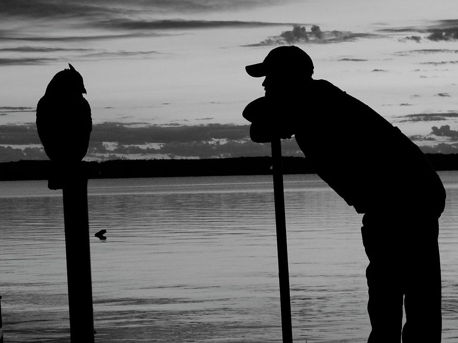 Silhouettes Photograph - Hoos The Wisest by Mike Justice