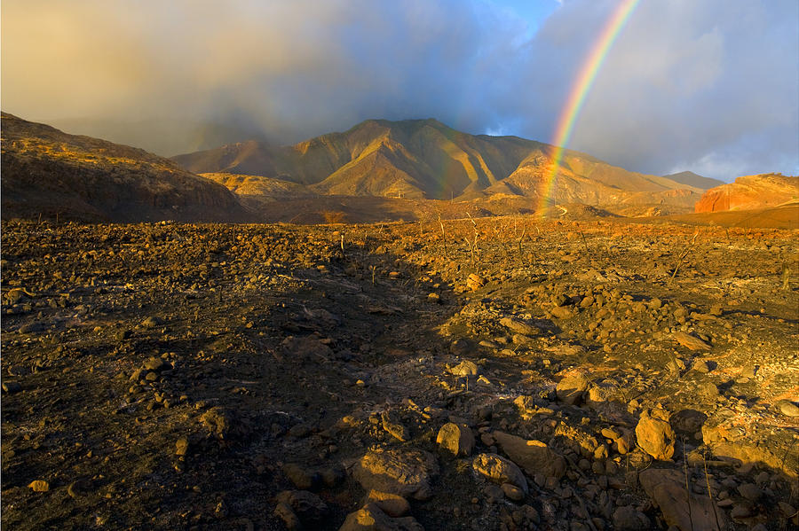 Rainbow Photograph - Hope From Desolation by Mike  Dawson