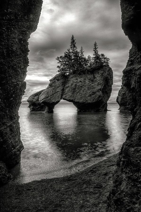 Hopewell Rocks by Neil Shapiro