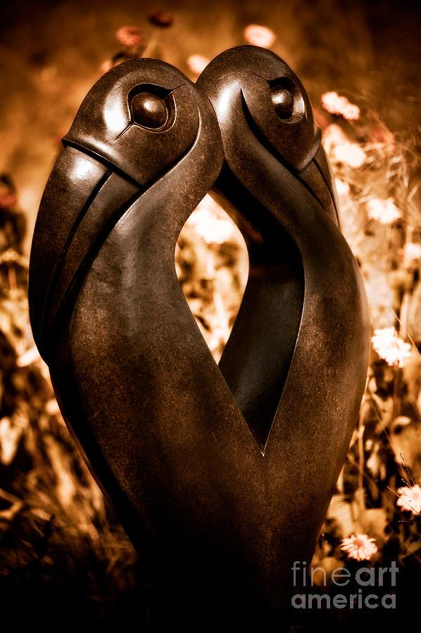 Art Photograph - Hornbills by Venetta Archer