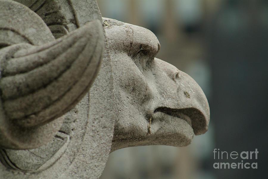 Horned Eagle by J Bloomrosen