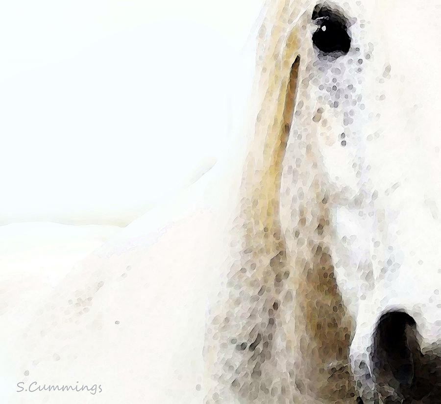 Animal Painting - Horse Art - Waiting For You  by Sharon Cummings
