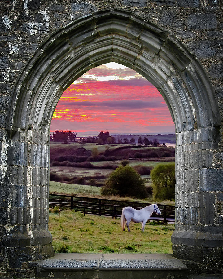 12th Century Photograph - Horse At Sunrise In County Clare by James Truett