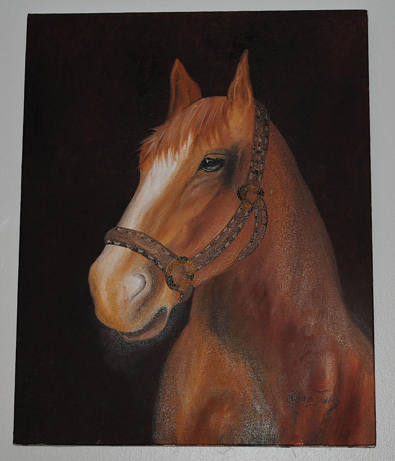 Horse Painting - Horse by Claudio Jose