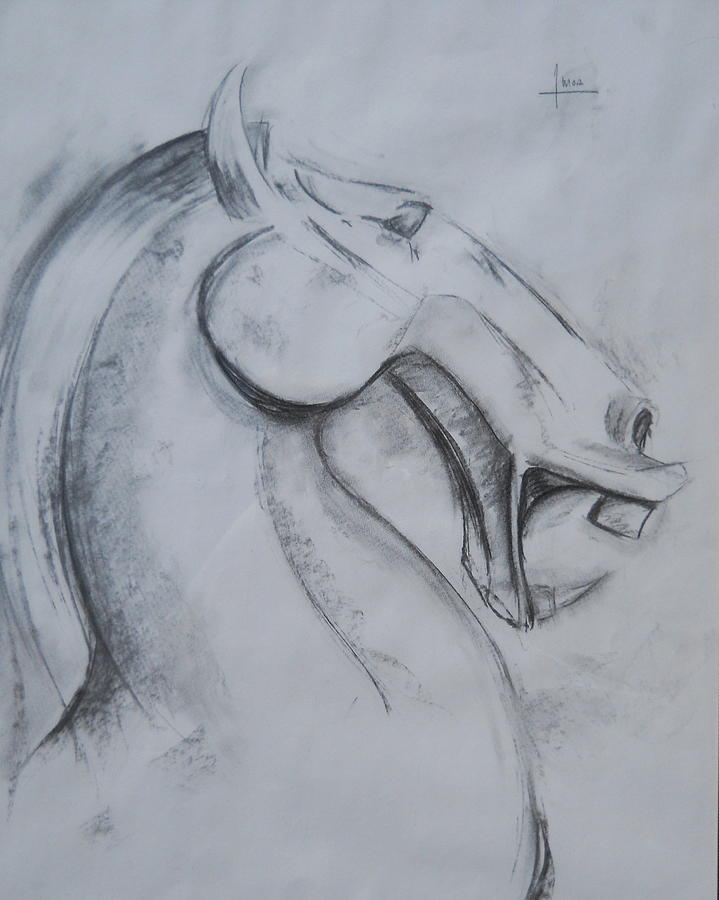 Horse Drawing - Horse Face by Victor Amor