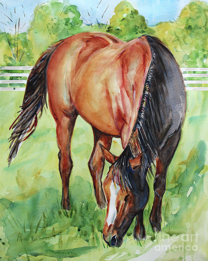Horse Grazing Painting by Maria's Watercolor