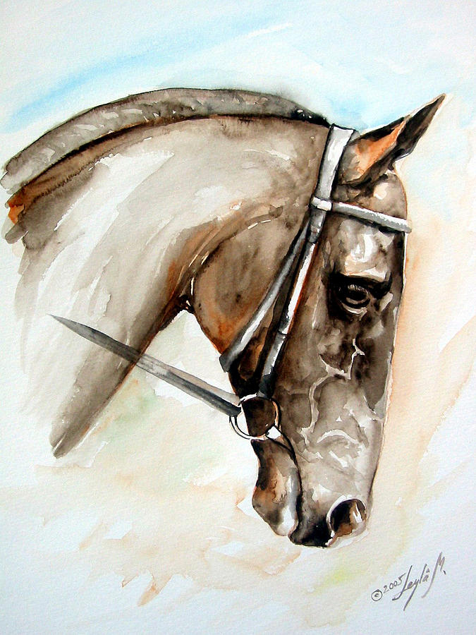 Horse Painting - Horse Head by Leyla Munteanu