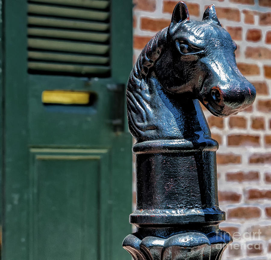Horse Head Post - Nola Photograph