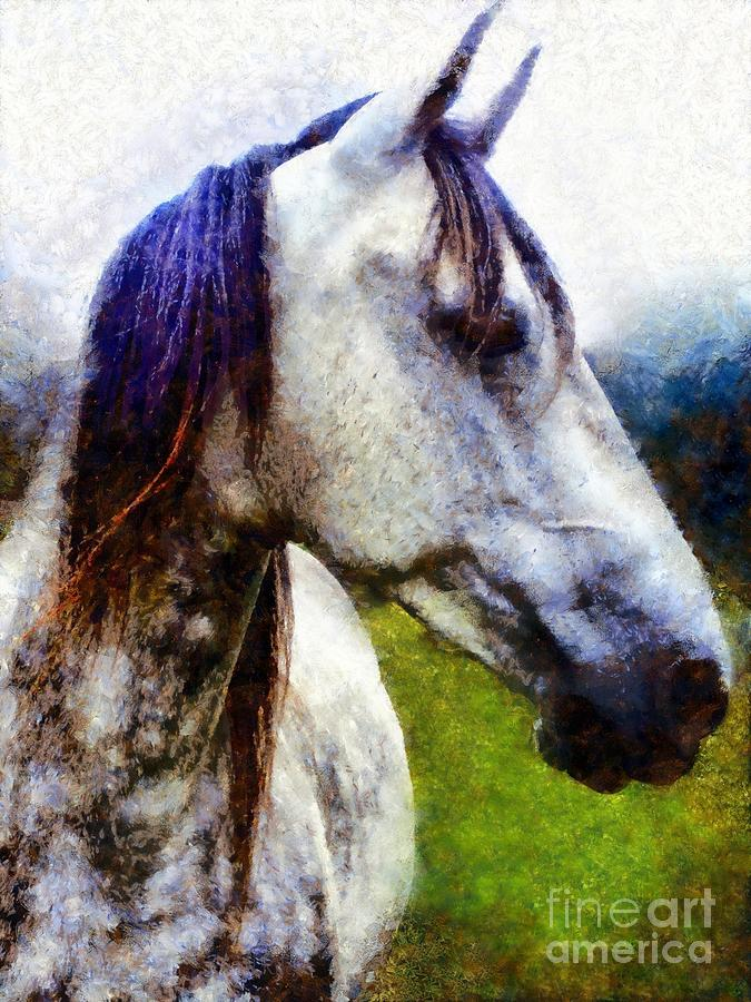 Horse I dream of you by Janine Riley