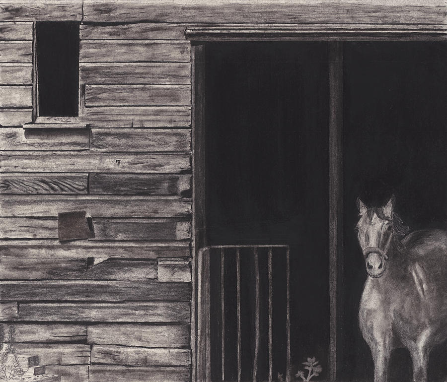Horse In Barn Drawing By Bryan Baumeister