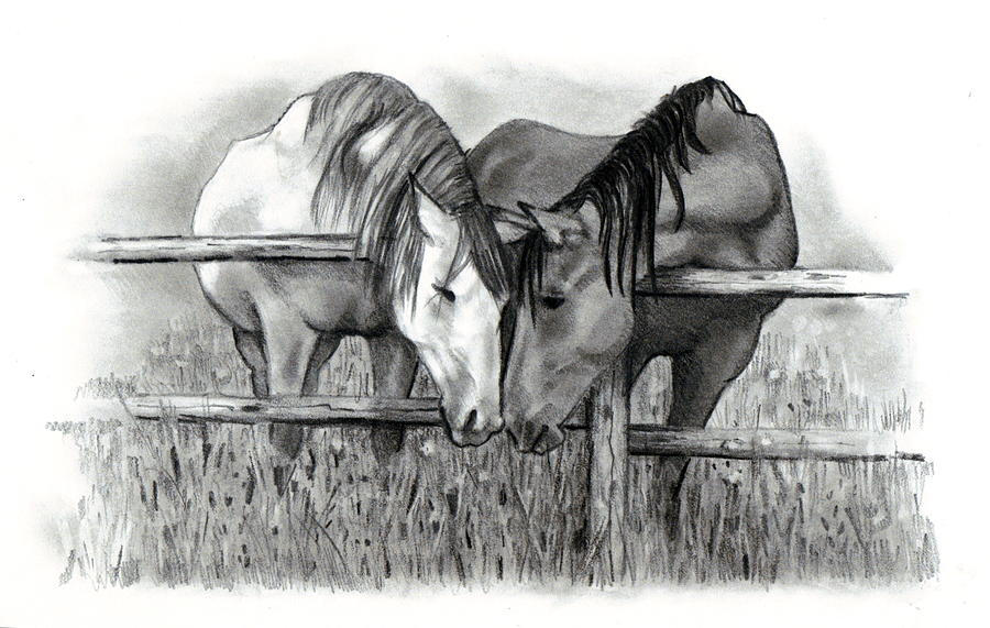 Horse Lovers Drawing