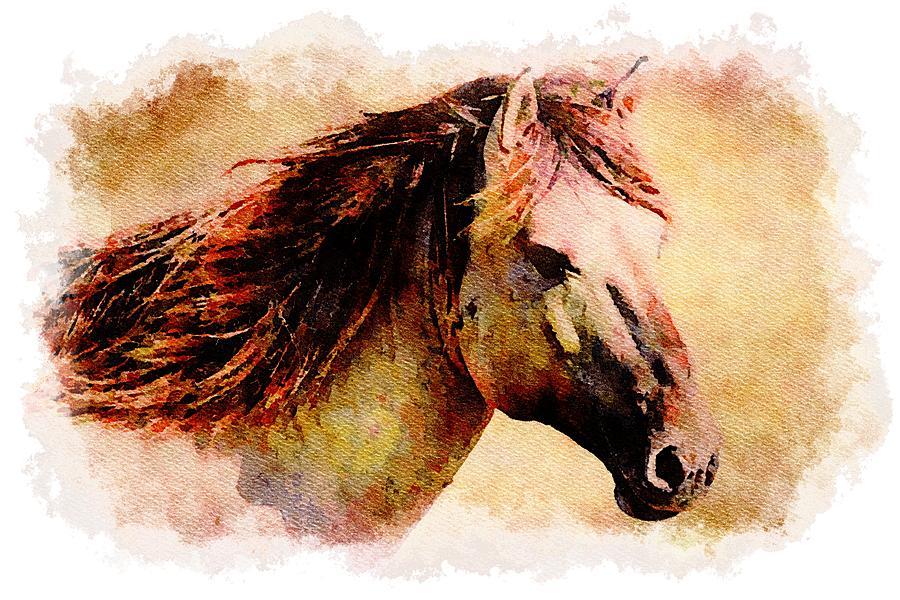 Horse by Mustapha Dazi