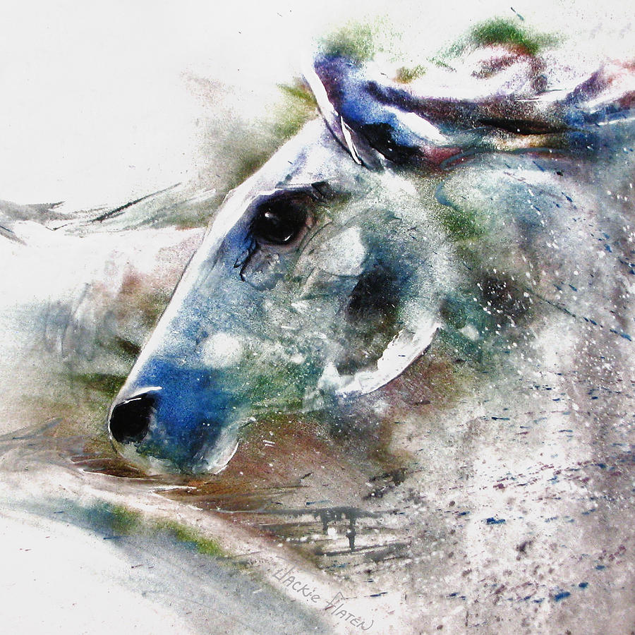 Horse of color by Jackie Flaten