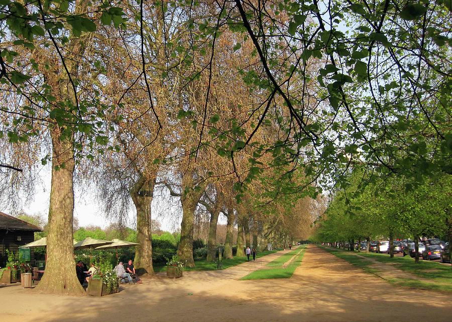 London Photograph - Horse Path by David L Griffin