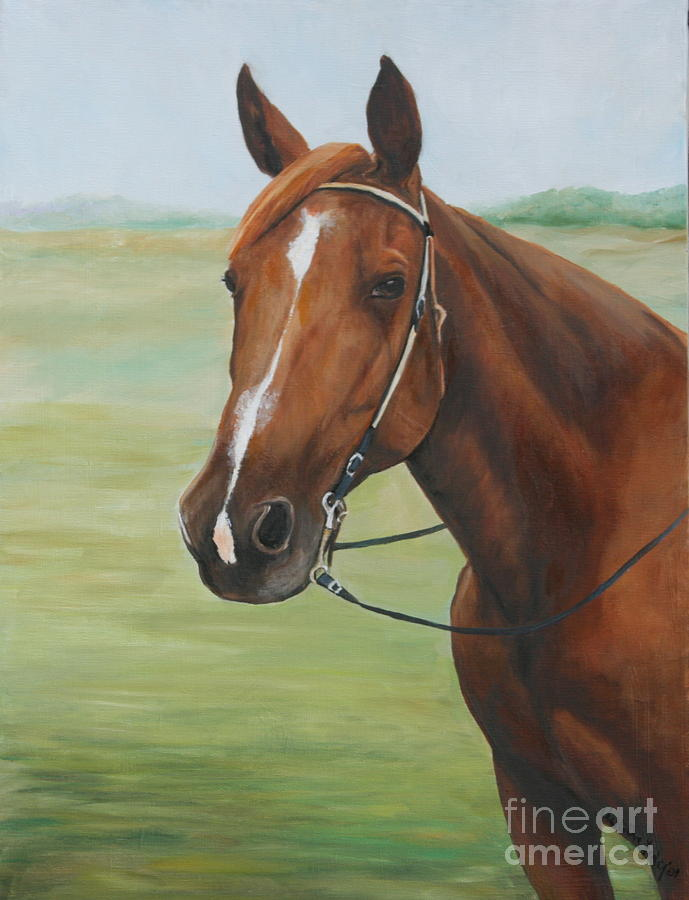 Pet Painting - Horse Portrait by Charlotte Yealey