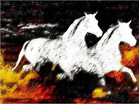 Horse Digital Art - Horse by Sam Joseph