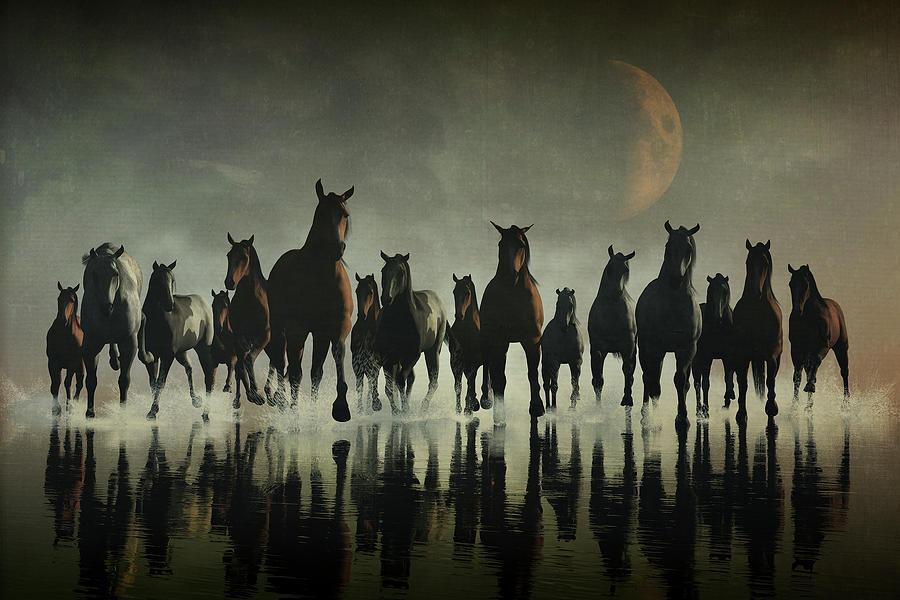 Horse stampede in the sea by Jan Keteleer