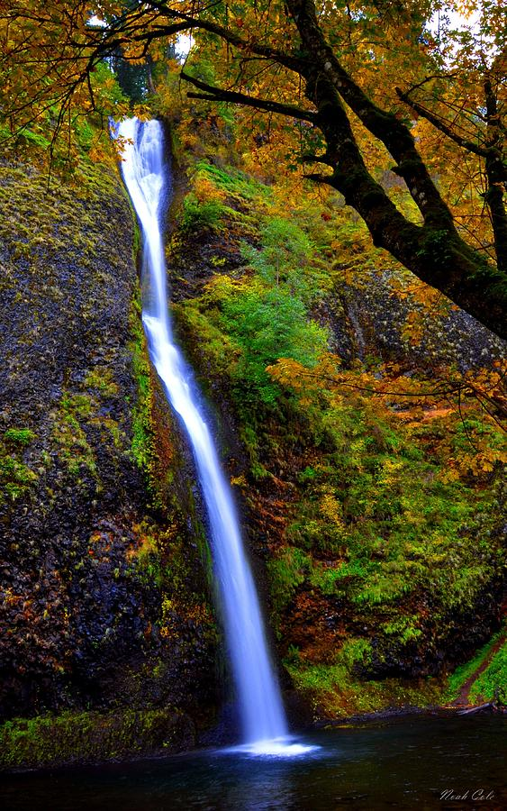 Horse Tail Falls Photograph - Horse Tail Falls - Autumn  by Noah Cole
