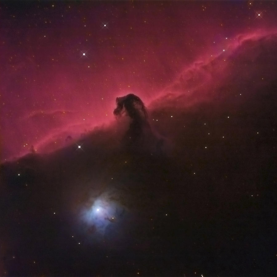 Horsehead Photograph - Horsehad Nebula II by Charles Warren