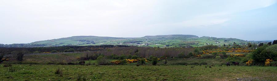 Ireland Photograph - Horses at Lough Arrow County Sligo Ireland by Teresa Mucha