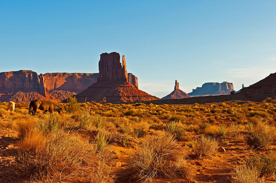 Monument Valley Photograph - Horses In The Valley by PhyllisAnn Mains