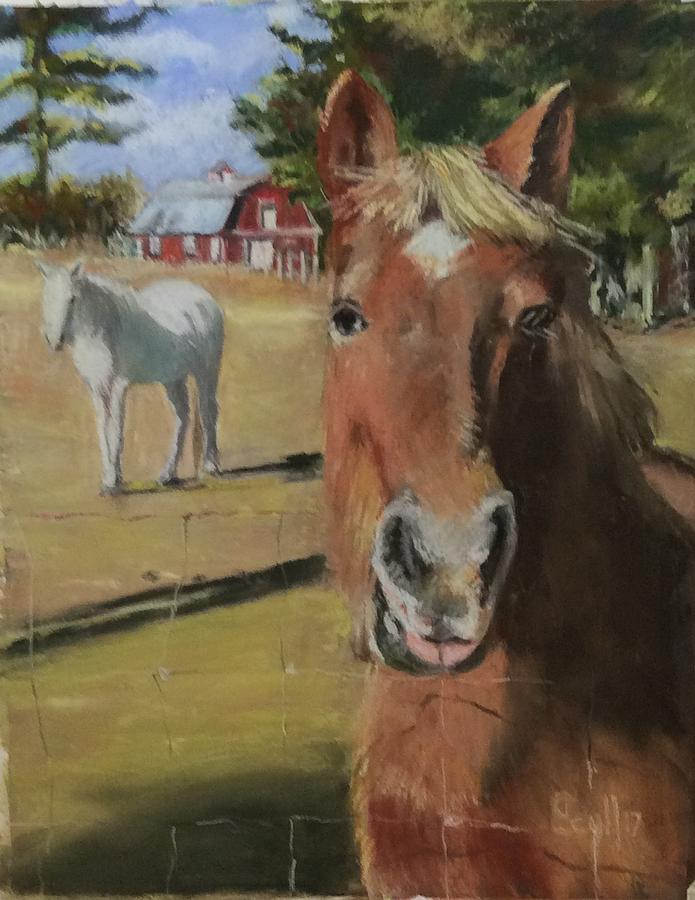 Horses on Main Rd. by Judith Scull